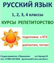 Подготовка к ВПР  русский язык  1- 4 классы